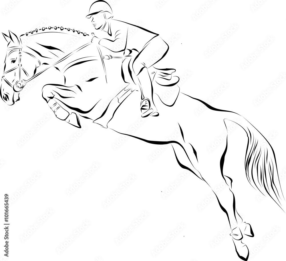 Fototapeta Koń skacze przez przeszkodę