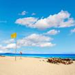 Corralejo Beach Fuerteventura at Canary Islands