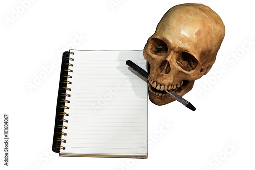 Fotografie, Tablou  Skull note taking, isolate, Clipping path