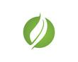 Natural green leaf logo