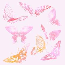 Set Of Watercolor Butterflies. Vector Illustration