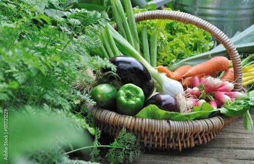 In de dag Groenten panier de légumes dans potager