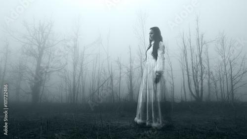 Fotografie, Obraz  Horror scene of a scary haunted woman