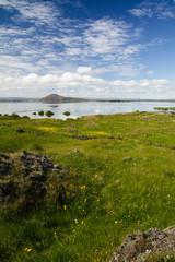 Fototapeta na wymiar Iceland lake during summer