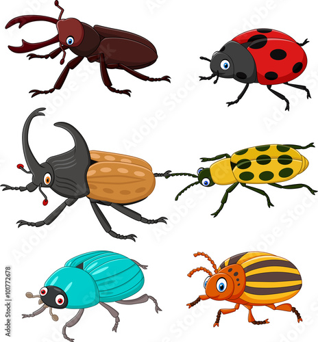 Fotografija Cartoon funny beetle collection