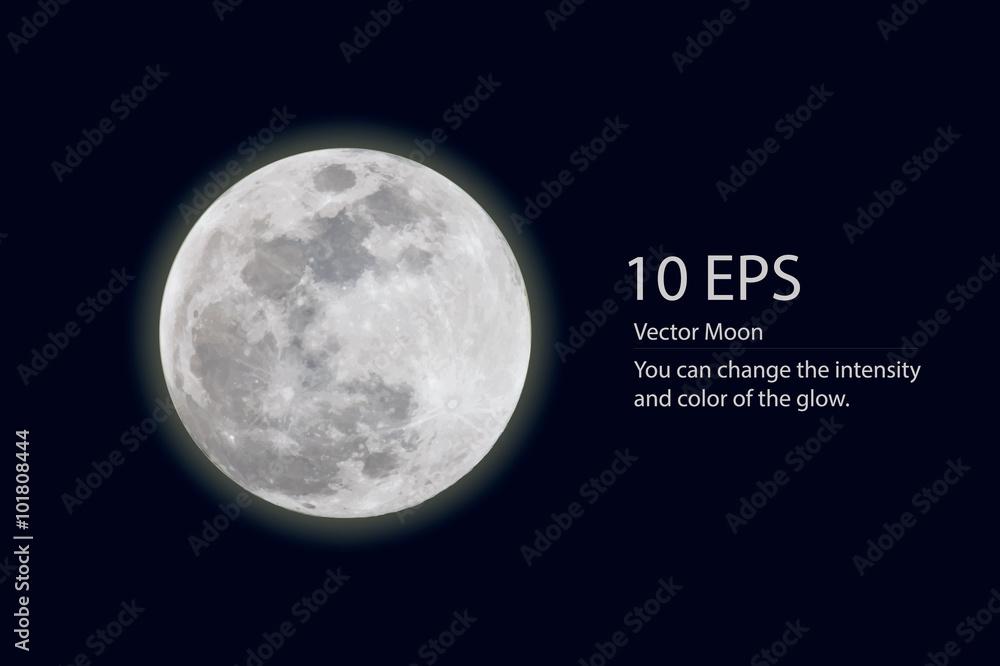 Fototapety, obrazy: vector moon