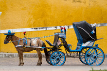 Horse Carriage In Izamal In Mexico