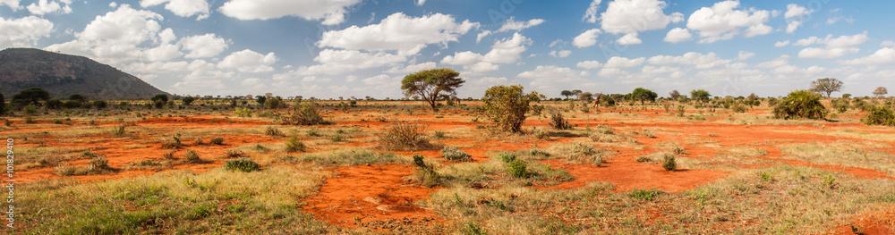 Fototapeta Tsavo East National Park, Kenya