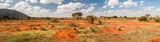 Fototapeta Sawanna - Tsavo East National Park, Kenya