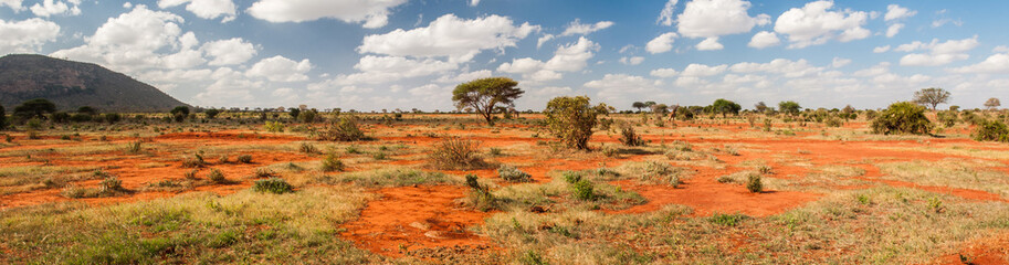 Tsavo East National Park, K...