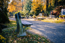 Autumn In Cemetery