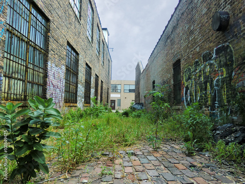 Photo  Urban alley with overgrown weeds and graffiti - landscape photo