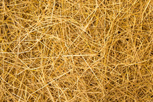 Straw Yellow For The Background.