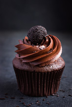 Chocolate Cupcake With Chocolate Decoration