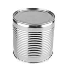 Iron Tin Can