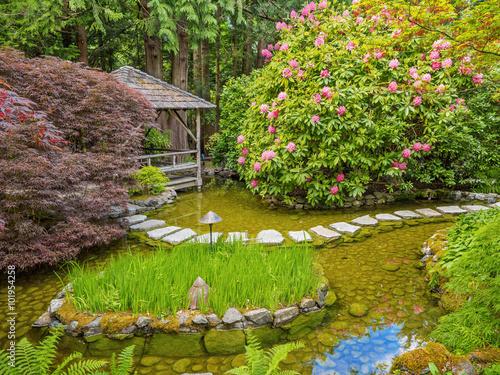 Fotografie, Obraz  Stepping stones over the pond in the spring