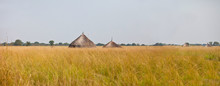 Panorama Of Grassland Of South...