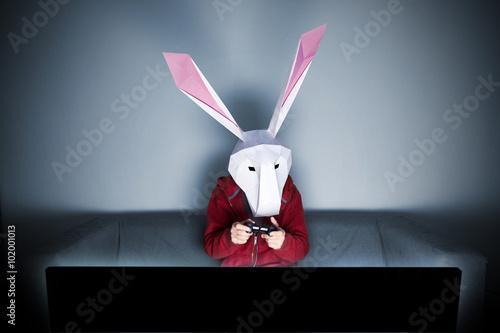 Photo  Rabbit gamer on the sofa