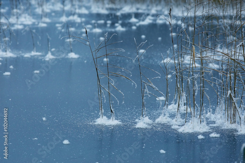 Garden Poster Bestsellers texture of the frozen lake, the ice