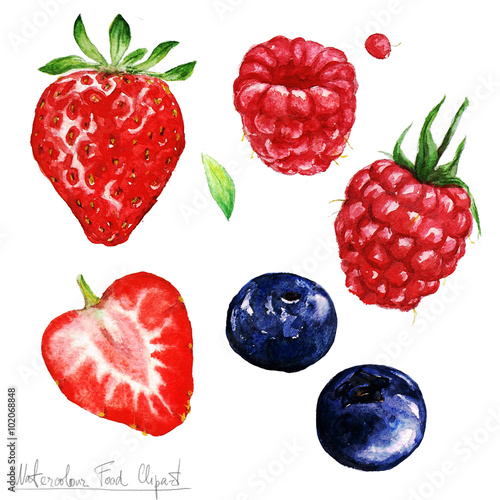 Montage in der Fensternische Aquarell Abbildungen Watercolor Food Clipart - Berries