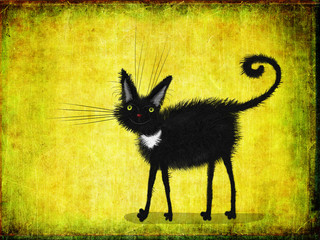 Fototapeta Kot Black Kitten With Yellow Eyes On Lime Background