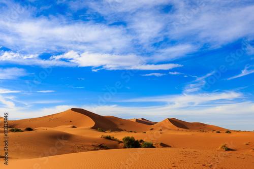 Foto op Canvas Droogte Sahara Desert, Morocco