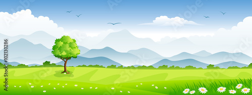 Foto op Canvas Lime groen Panorama summer landscape