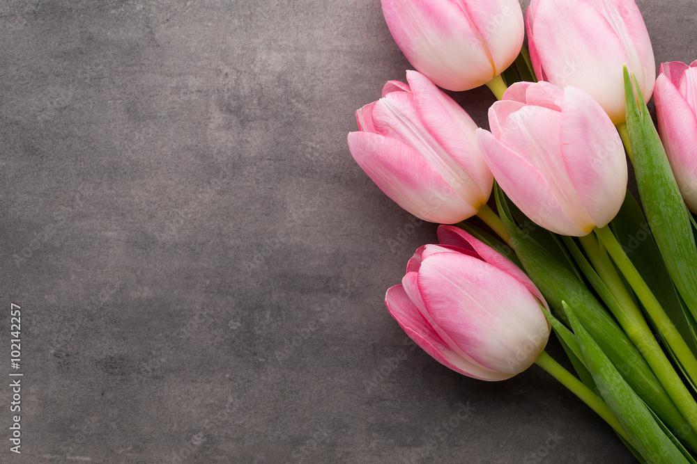 Fototapety, obrazy: Tulipany na szarym tle