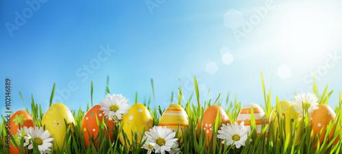 Easter eggs on green grass - 102146889