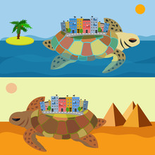 Turtle Travels To The City On ...
