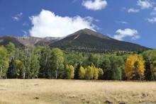 Snow Capped Humphreys Peak