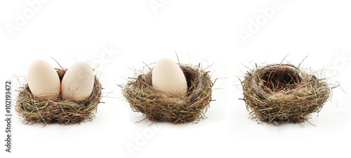 Photo Empty nest and eggs inside the nests, isolated on white