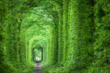 Fantastic Real Tunnel Of Love,...