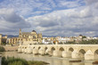 Mosque and Roman Bridge in Cordoba - Spain