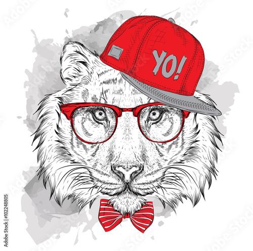 Poster Croquis dessinés à la main des animaux The poster with the image tiger portrait in hip-hop hat. Vector illustration.