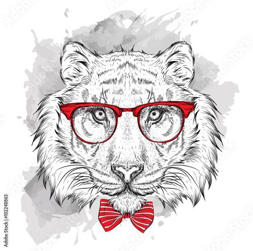 Poster Croquis dessinés à la main des animaux Image Portrait tiger in the cravat and with glasses. Hand draw vector illustration.