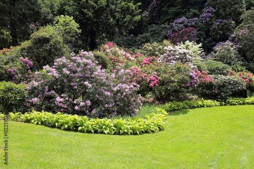 Poster Kaki Garden