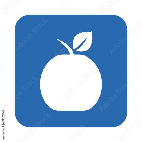 Fototapeta Apple icon obraz na płótnie