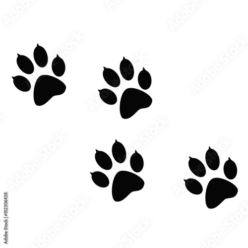 Imprint of the black paw prints of the animal  Web icon
