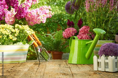 Fotobehang Tuin Gardening tools on wood table in the garden