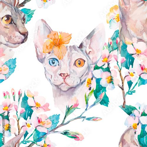 Fototapeta Koty w pastelach