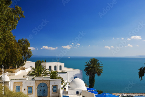 Poster Tunisia Tunisia. Sidi Bou Said - typical building with white walls, blue doors and windows