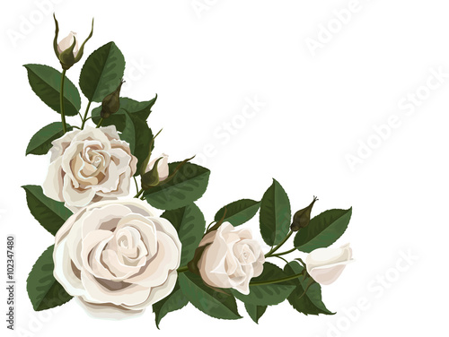 White Roses Buds And Green Leaves Corner Composition Element To