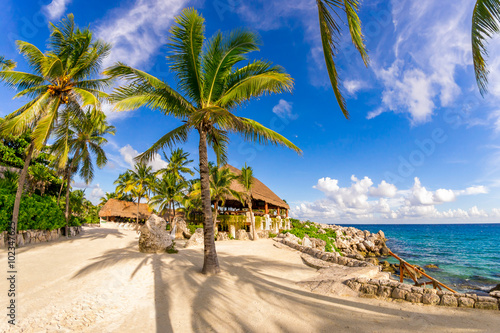 Tuinposter Mexico A wonderful relaxing vacation in tropical Mexico. Seascape with palm trees.