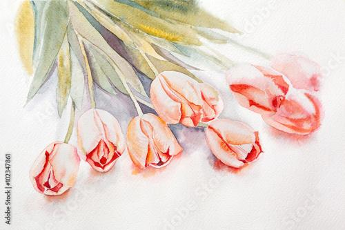 zolte-tulipany-akwarela