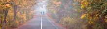 Autumn Landscape, Panorama, Banner - Morning Running On Jogging And Bike Path In The Autumn Park With Fallen Leaves In The Fog