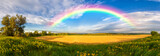 Fototapeta Rainbow - Panorama of a big summer field