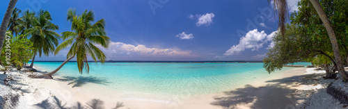 Beach panorama at Maldives with blue sky, palm trees and turquoi