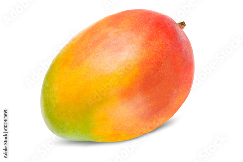 Obraz na plátne Mango isolated on white