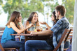 canvas print picture - Group of friends talking and drinking at home